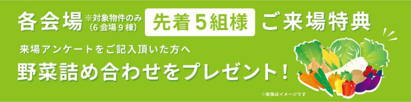 野菜詰め合わせプレゼント_大分不動産情報サービス_サラダホーム