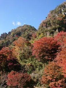 利光が撮影した大分県中津市耶馬渓の紅葉の写真 岩肌と樹木の融合がとてもかっこいいです